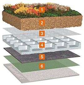 układ warstw dach zielony